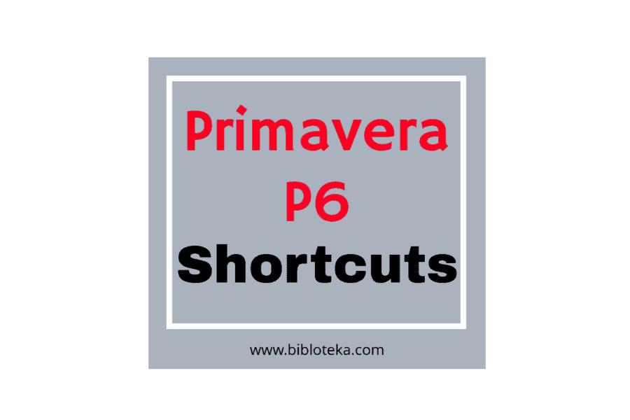 Primavera P6 shortcuts