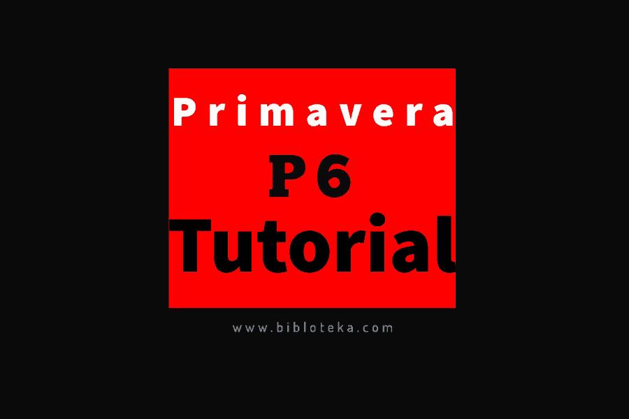 P6 tutorial