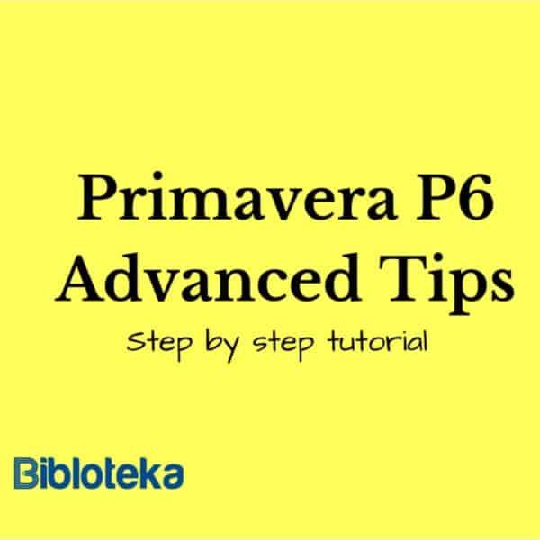 Primavera P6 Tips Guide